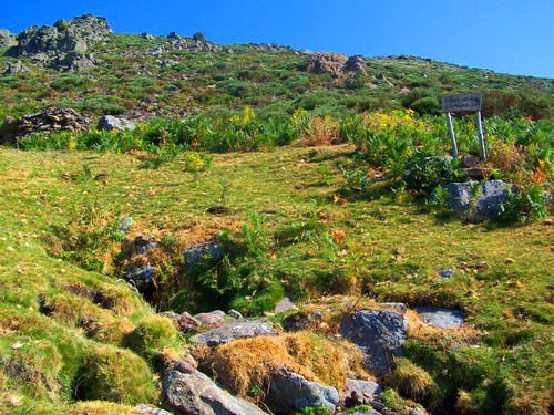 Fuente Helecha – Las Vaquerizas